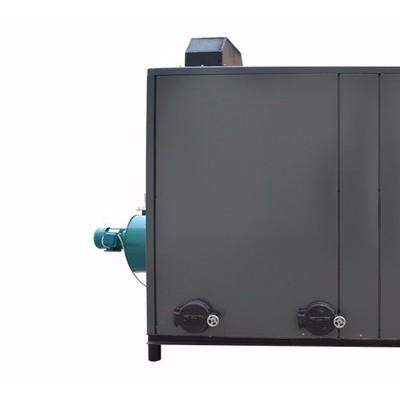 劳士特20万大卡生物质热水锅炉生物质锅炉热能设备洗浴宾馆热水设备环保节能颗粒机  电镀蒸汽锅炉